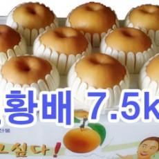 원황배 선물세트7.5kg (9과)