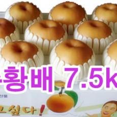 추황배 선물세트7.5kg (10과)